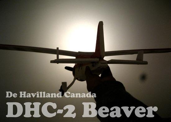 Beaver-0.jpg