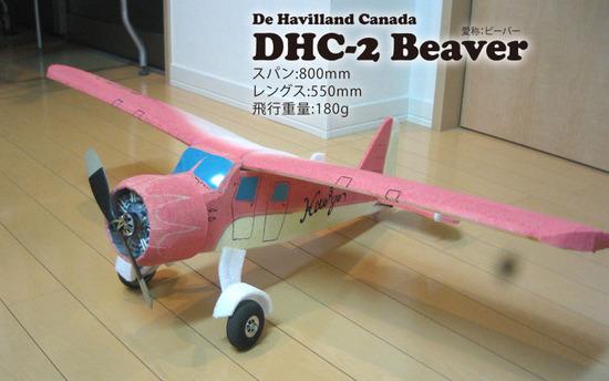 Beaver-5.jpg