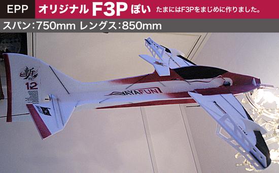 F3P-01.jpg
