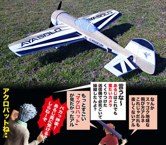 YAK55-D-02.jpg