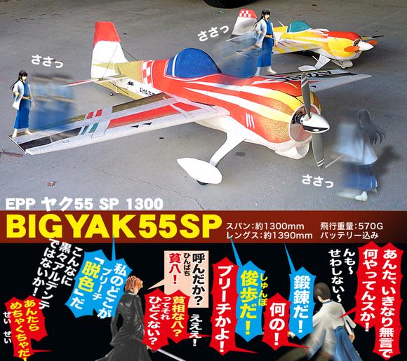 55-1300-01.jpg